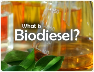 What is Biodiesel?