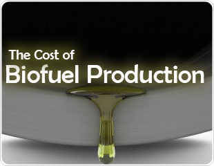 The Cost of Biofuel Production